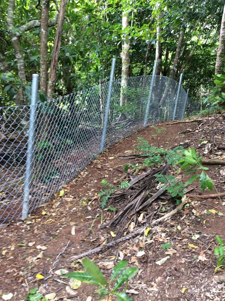 Mount Talau National Park fenced off