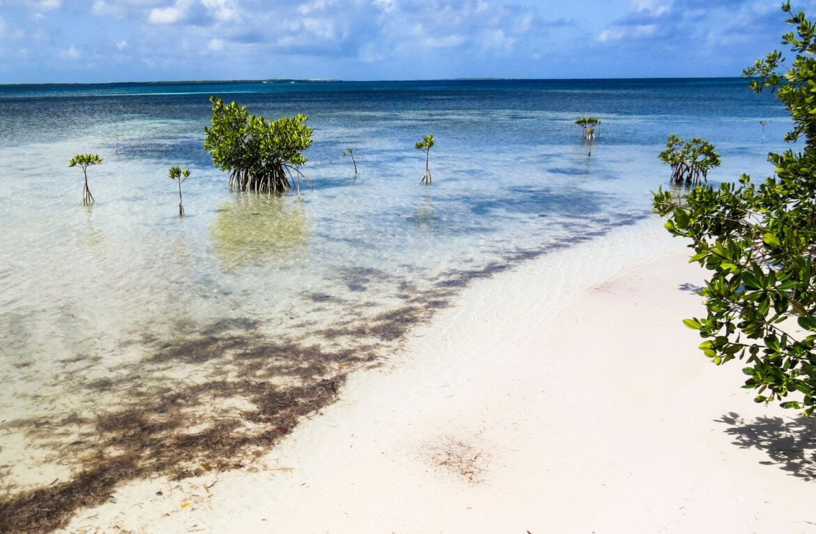 Cuba gets US$23.9 million grant from Green Climate Fund for coastal resilience project